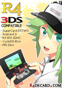 Pokemon R4 3DS